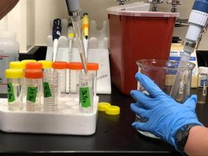Lab tests micro pollutants